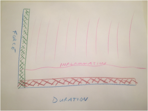 Force vs. Duration Graph showing less inflammation with long duration low force stretching